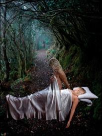 02 THE DREAMS PROJECT, PROYECTO SUEÑOS Dream 02, THE FOREST, Sueño 2 EL BOSQUE