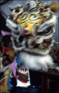 Hong Kong, Chinese New Year 071