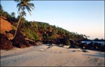 India, Goa, Arambol 108