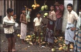 Sri Lanka 604