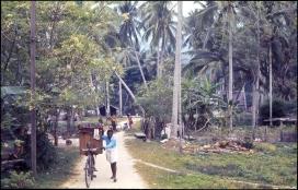 Sri Lanka 685